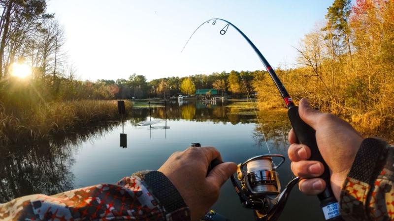 Лучшие рыболовные места Волгоградской области