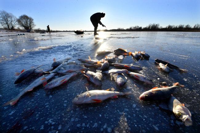 Выбор рыбного места в зимний период