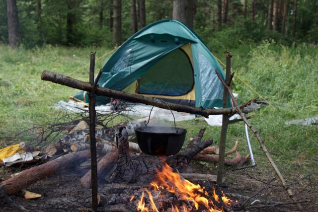 Как отдохнуть в лесу без неприятных сюрпризов: правила безопасности