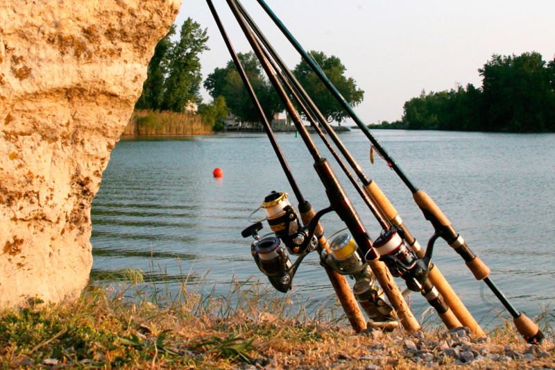 Советы для новичков при выборе спиннинга для ловли щуки