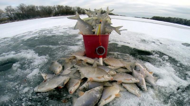 Без смекалки нет рыбалки: полезные советы, которые помогут рыбаку при бесклёвье