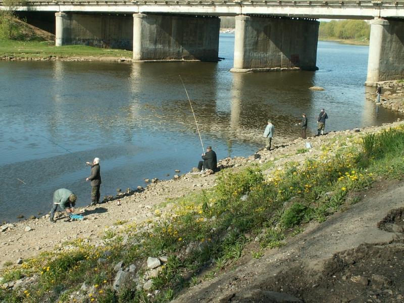 Рыбалка на реке Которосль