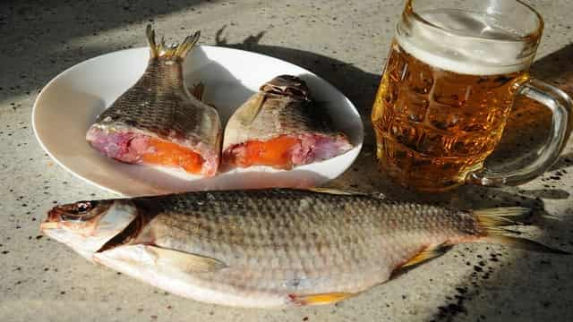 Как вялить пойманную рыбу